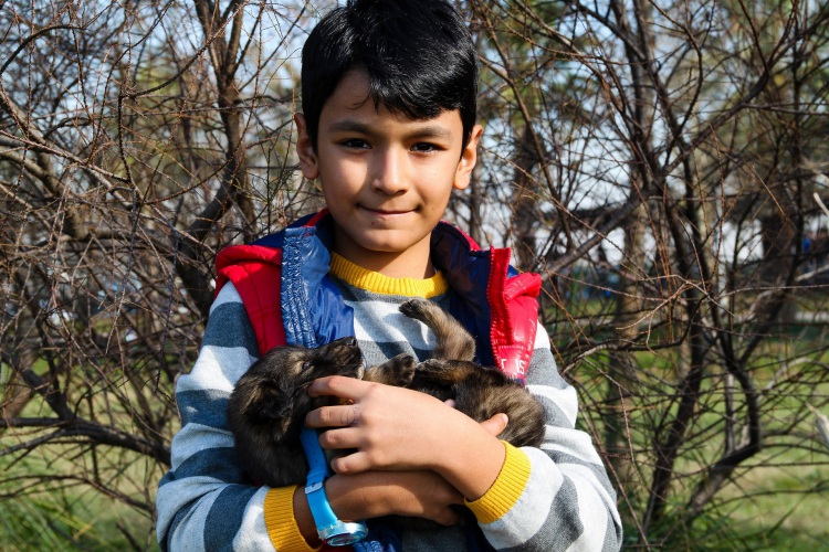 Young Boy with Puppy